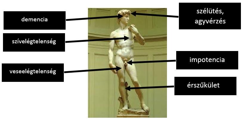 """Képtalálat a következőre: """"emberi test"""""""
